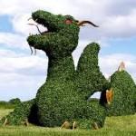 Топиари: дракон из кустов